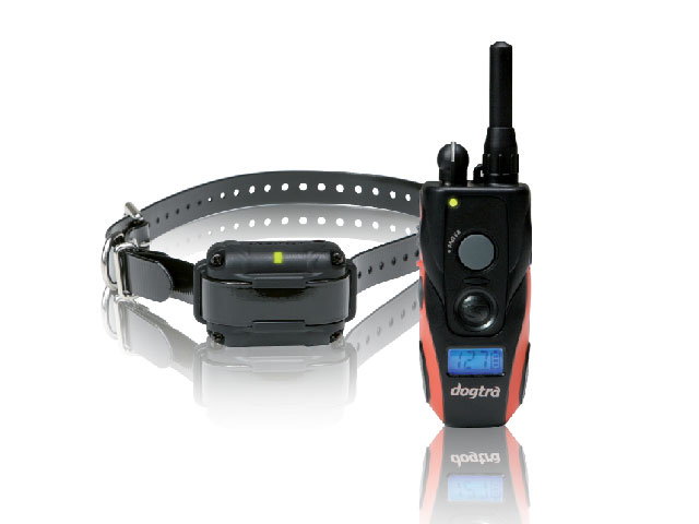 shock collar, remote training collar, Dogtra, dog training