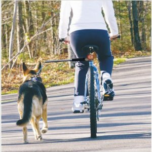 Walky Dog bike attachment