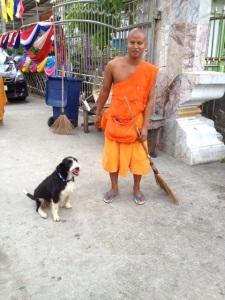 Monk befriends feral dog