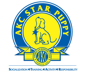 Image result for akc star puppy program